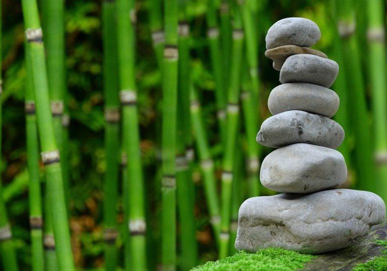 Piękny ,a także estetyczny ogród to zasługa wielu godzin spędzonych  w jego zaciszu w trakcie jego pielegnacji.